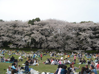 20070403002